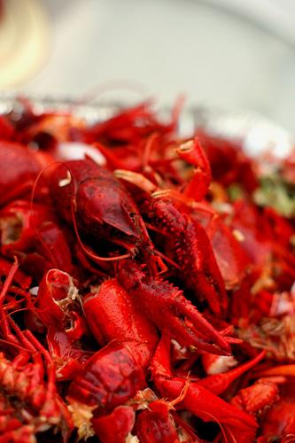Pile of crawfish