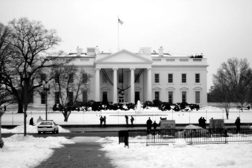 Fuzzy White House
